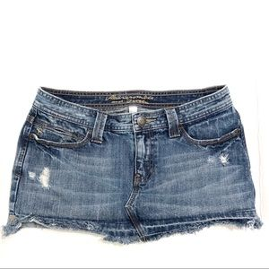 Abercrombie and Fitch Distressed Skirt Size 2